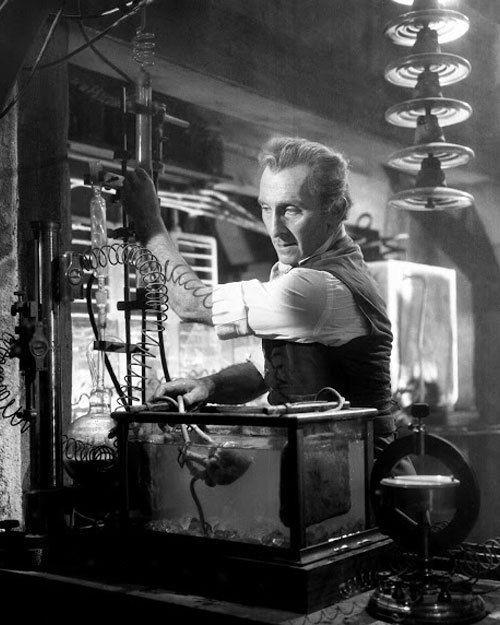 The Evil of Frankenstein36