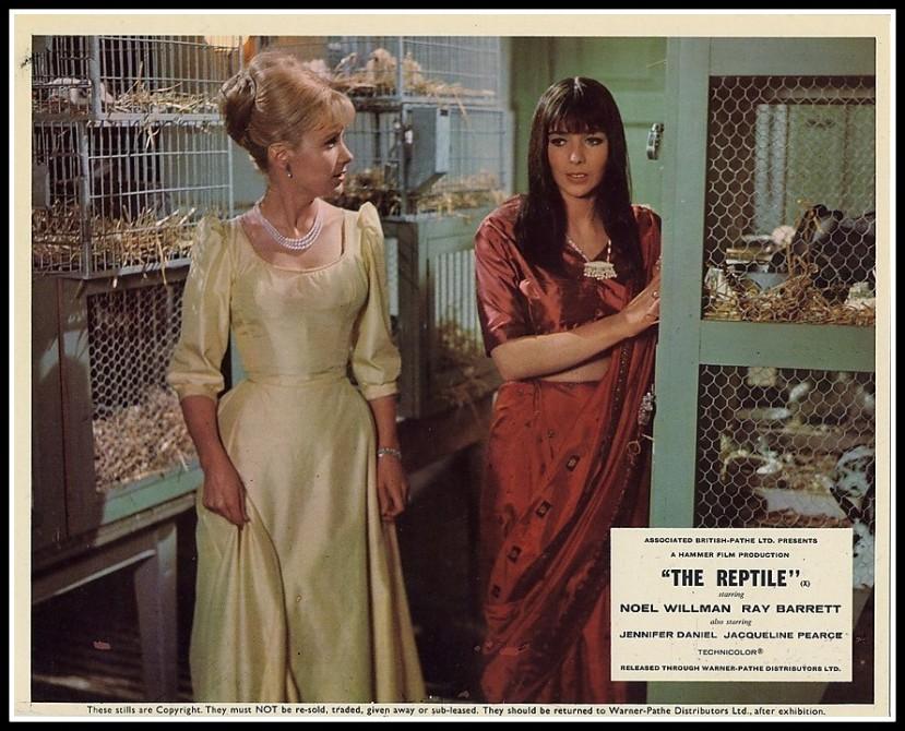 The Reptile14