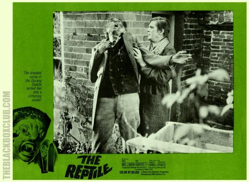 The Reptile6