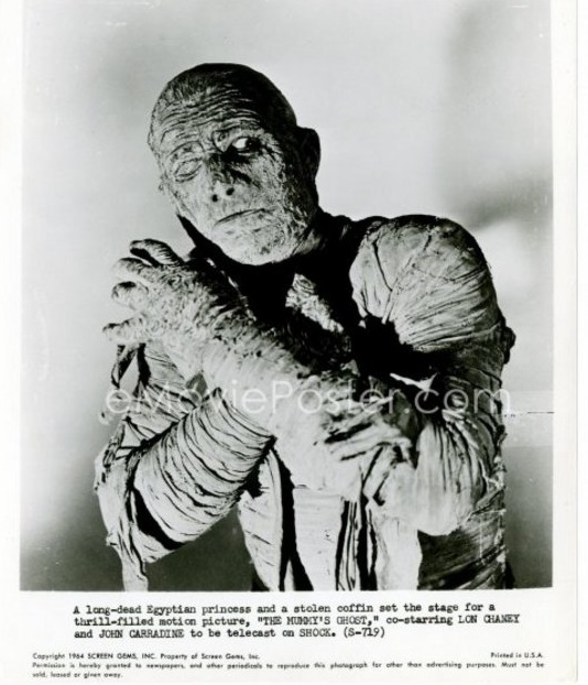 The Mummy's Ghost17