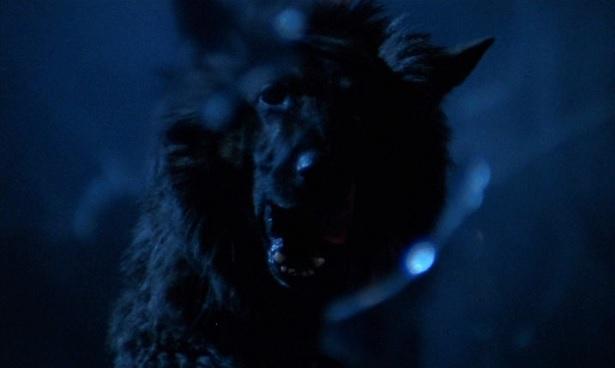 The Beast Must Die 26