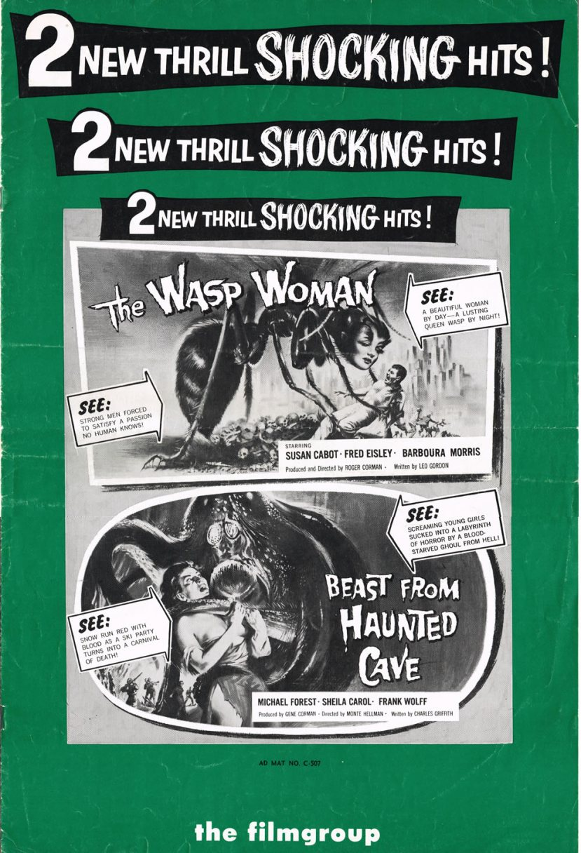 The Wasp Woman 18