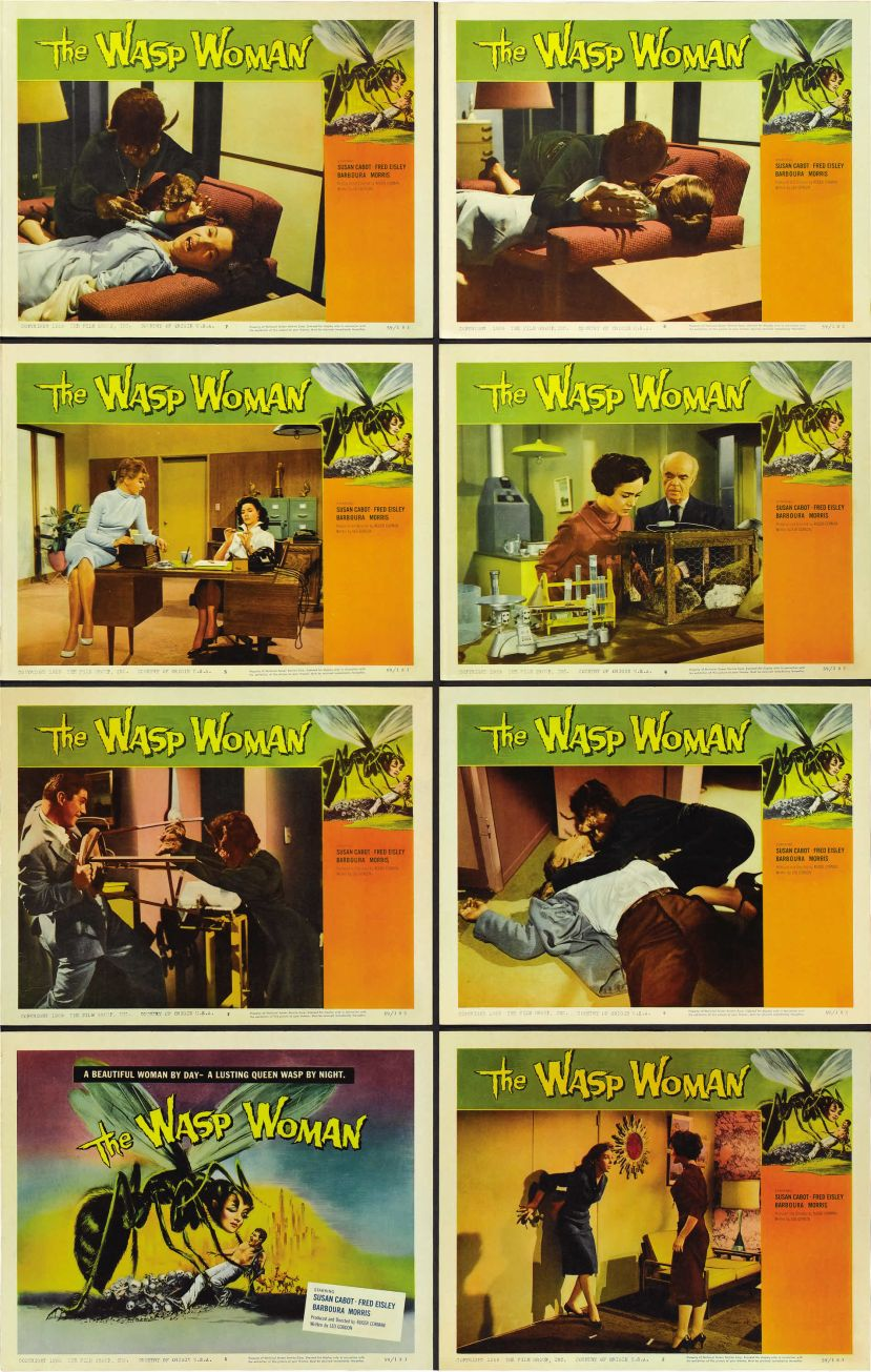 The Wasp Woman 5