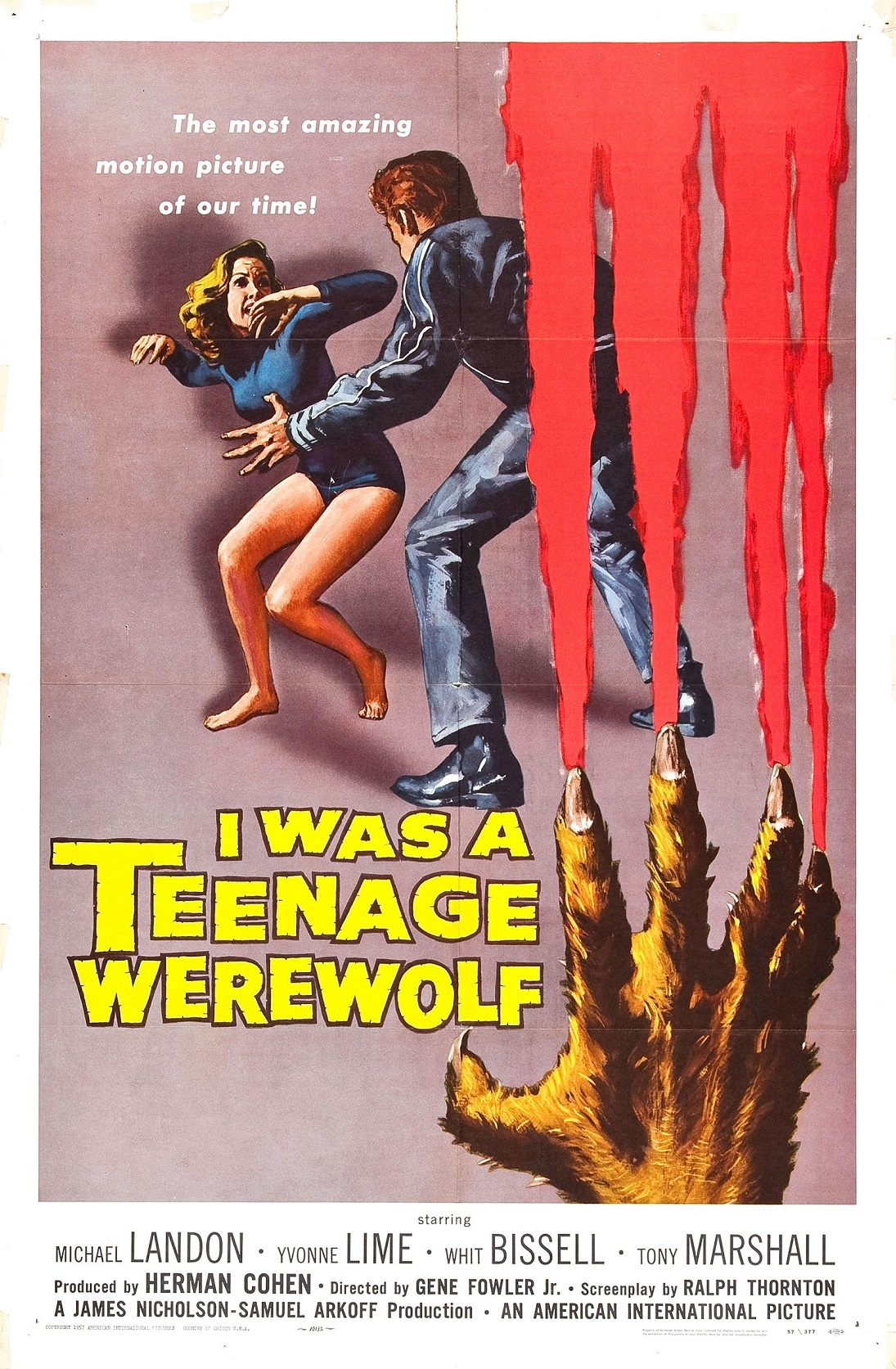 i-was-a-teenage-werewolf-1kite44i-was-a-teenage-werewolf-1i-was-a-teenage-werewolf-17i-was-a-teenage-werewolf-55i-was-a-teenage-werewolf-11