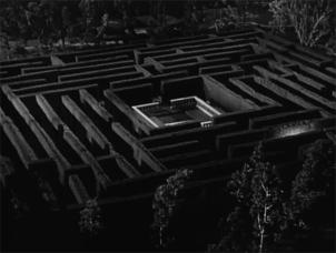 the-maze-11
