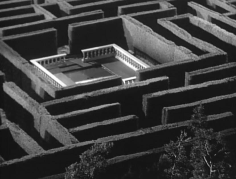 the-maze-8