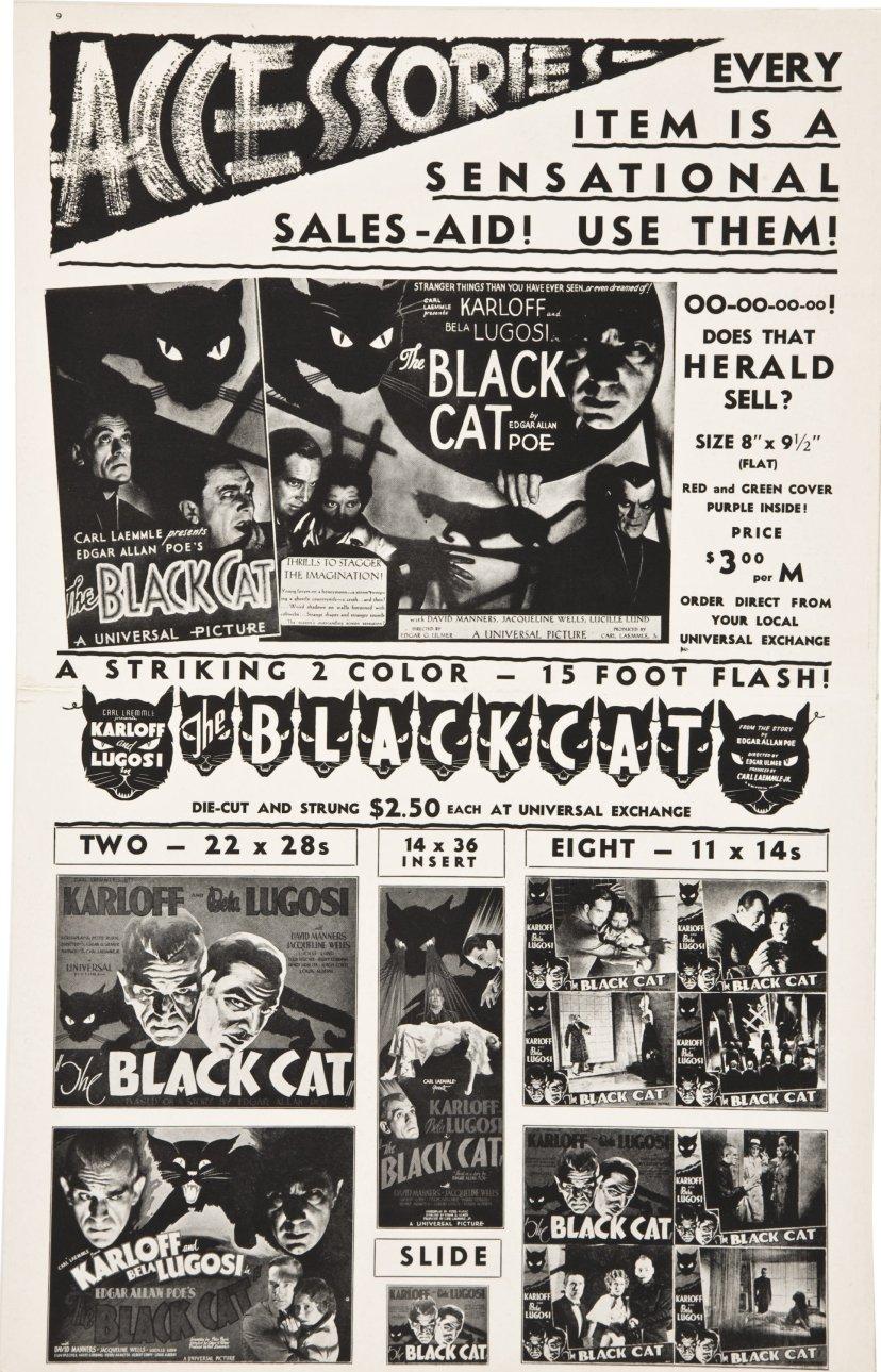 the-black-cat-1934-7