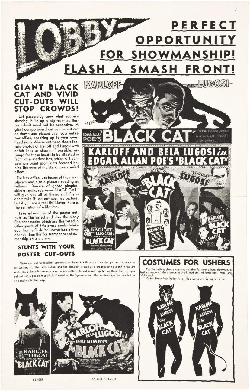 the-black-cat-1934-8