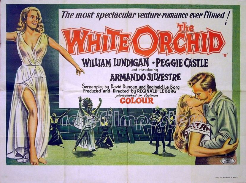 the-white-orchid-16