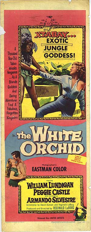 the-white-orchid-2