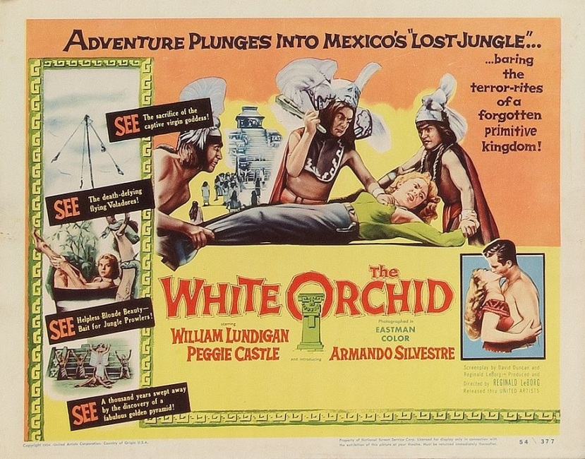 the-white-orchid-25