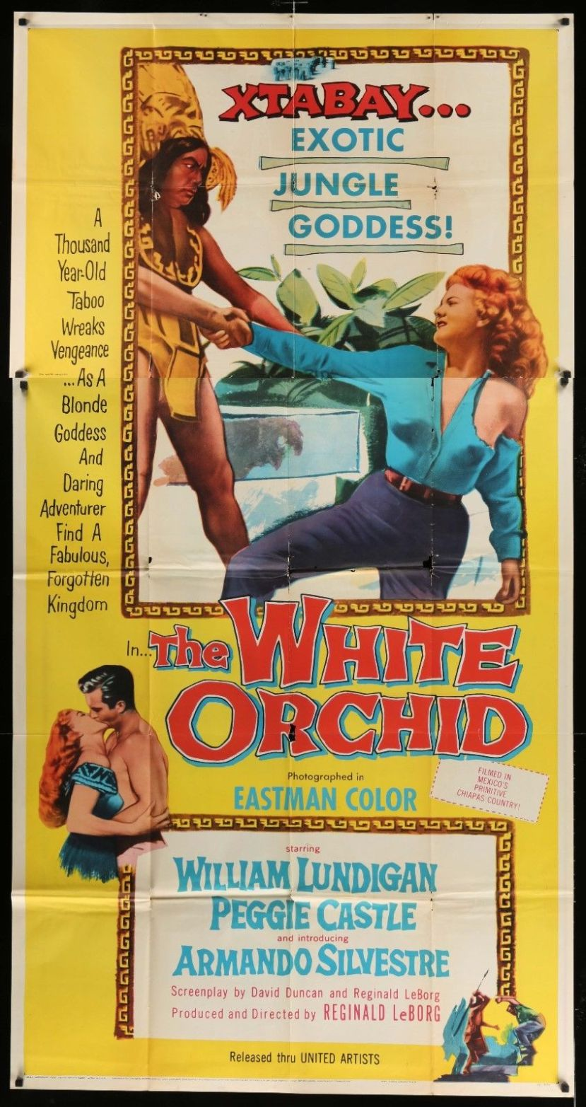 the-white-orchid-5