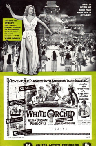 the-white-orchid-9