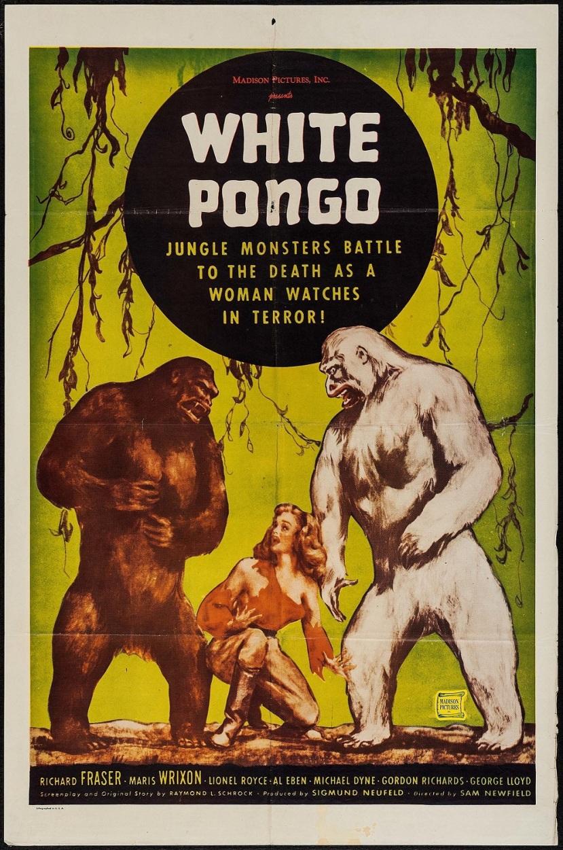 white-pongo-1