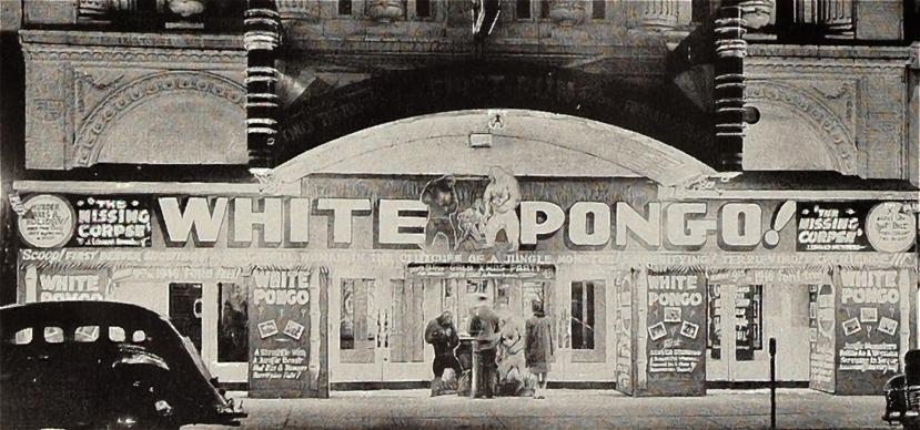 white-pongo-21