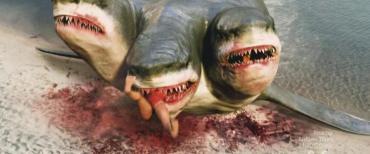 3-headed-shark-attack-3