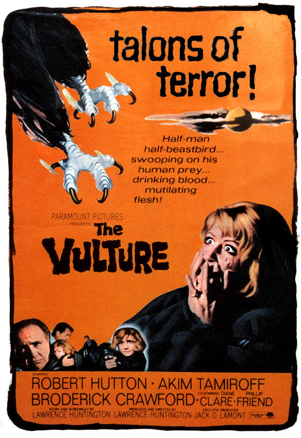 The Vulture 1kite44
