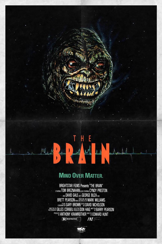 The Brain 1kite44