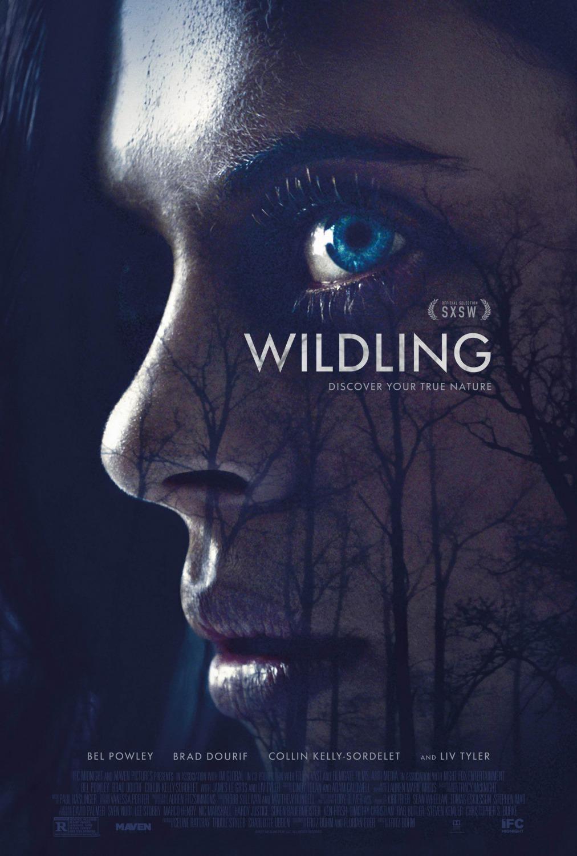 wildling 1kite44